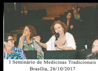 Fotos Seminario Brasilia